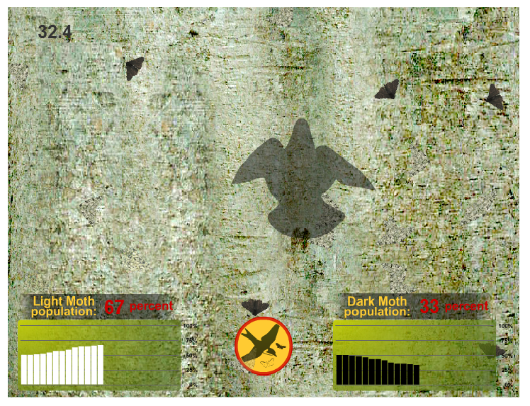 Peppered Moth Simulation Ict Portfolio